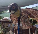 דחליל עוף דורס ענק להרחקת יונים