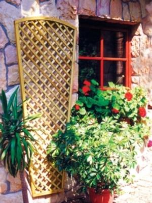 לוח רשת לצמחים מטפסים לקיר הבית - צוות גדרון