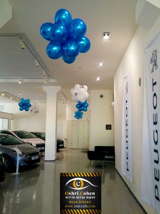 עיצוב אולם תצוגה של מכוניות פגו
