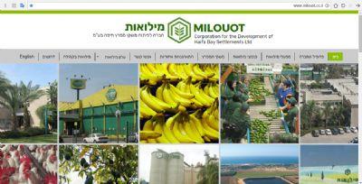 אתר מילואות - גלית מועלם עיצוב ובניית אתרים