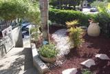 כניסה לבית: חיפוי טוף ושביל חלוקים סביב הצמחייה