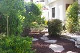 חיפוי טוף סביב שביל אבני מדרך וצמחייה