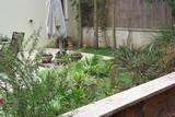 מבט מבחוץ אל הגינה