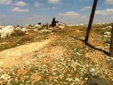 חוות עולם ליד איתמר רועה ישראלית