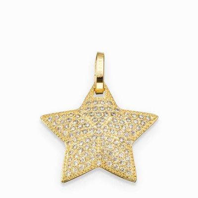 תליון סשה כוכב תבליט קטן זהב