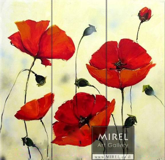 ציור פרחים כלניות