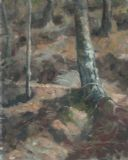 TREE TRUNKS   -   OILS 40 X 50 CMS