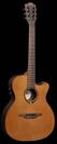 גיטרה קלאסית מוגברת לג  LAG TN300A14CE