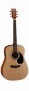 גיטרה אקוסטית מוגברת קורט  CORT AD810E NS