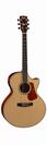 גיטרה אקוסטית קורט  מוגברת CORT NDX20 NAT