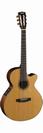 גיטרה קלאסית מוגברת קורט  CORT CEC-7 FISMAN Presys