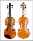 כינור 4/4 ללא ארגז וקשת VIVALDI VH100N