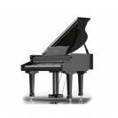 פסנתר כנף  RINGWAY GDP6320 BK