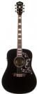 גיטרה אקוסטית מוגברת  וושבורן WASHBURN WD 210