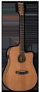 גיטרה אקוסטית ESP D-320E NS