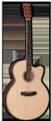 גיטרה אקוסטית מוגברת  ESP J-310E NS