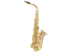 סקסופון אלט (GOLDEN CUP JHAS1102RL alto saxophone(rose copper