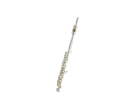פיקולו  (GOLDEN CUP JHPC1202S piccolo(silver plated