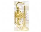 קורנית  (GOLDEN CUP JHCT1407 cornet(lacquer