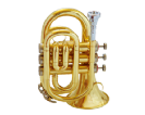 חצוצרה (GOLDEN CUP JHPT1406 Pocket trumpet(lacquer