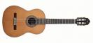גיטרה קלאסית מנואל רודריגז MANUEL RODRIGUEZ D