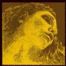 סט אוה-פיראצי גולד לכינור - סול  כסף פירסטרו PIRASTRO PIR415091