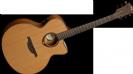 גיטרה אקוסטית ג'מבו מוגברת  לג LAG T200JCE